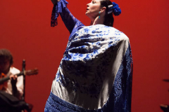 Yolanda_Herencia-Flamenca-5