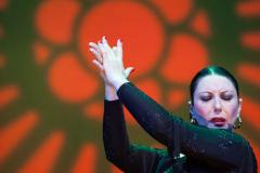 Yolanda_Herencia-Flamenca-500x489